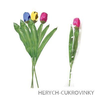 Čokoládový tulipán ml. čok. 20g